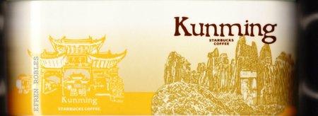 Starbucks City Mug Kunming - Stone Forest