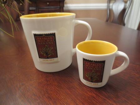 Starbucks City Mug Arabian Mocha Demi
