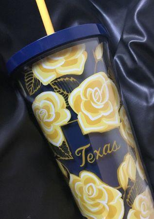 Starbucks City Mug 2019 Texas Plastic Tumbler